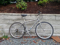 Classic Raleigh Tarantula Adult Bike