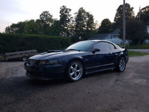 2001 Ford Mustang Coupe  gt