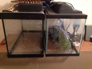 Two fish tanks with everything