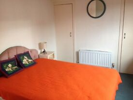 Single Room for a rent in Dungannon