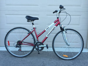 SOLD Raleigh Woman's Bicycle / Bike $150  SOLD
