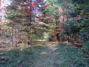 5.7 Acre Country Lot on Pine Ridge Road/Thessalon