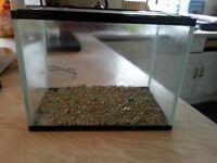 Hard plastic fish tank