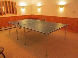 Table Tennis Table & Net