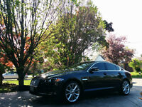 SHOWROOM PACKAGE FULL 3 Stage Polish SCRATCH REMOVAL ONLY $175