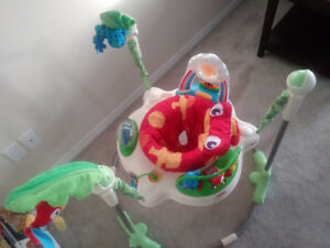Fisher price rainforest jumperoo.