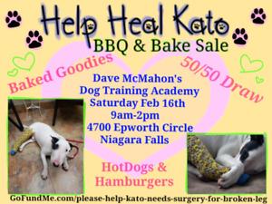 BBQ & Bake sale fundraiser