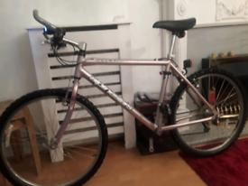 £55 alpine bike
