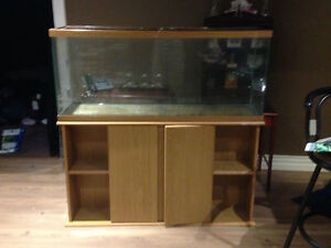 55 galllon Fish tank with stand