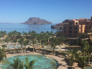 THE BEAUTIFUL SEA OF CORTEZ AWAITS YOU