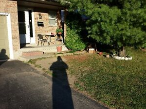 Lawncare and landscaping London Ontario image 8