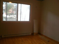 LARGE 4 1/2 FOR RENT (DUPLEX, FIRST FLOOR)