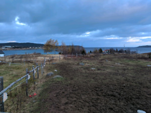 1 Acre Witless Bay