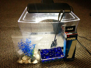 Selling Fish Tank set with decoration