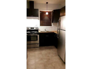 RENOVATED 3 BEDROOM BAYFRONT APARTMENT AVAILABLE NOW!!
