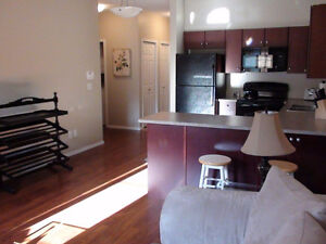 Furnished luxurious one bedroom + den condo in Quail Ridge