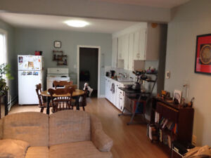 Room available in nice two bedroom apartment downtown