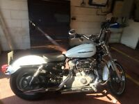 Harley Davidson xl883 2004