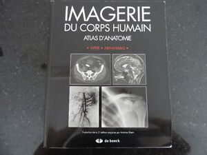 Imagerie du corps humain