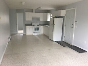Like NEW, VERY SPACIOUS Basement Suite for RENT