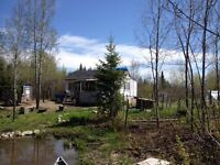 Cabin on 12.8 acres MUST SELL