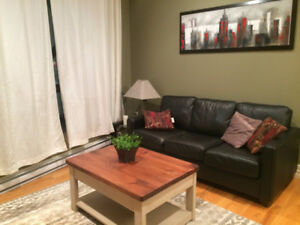 Executive furnished apartments available by the month