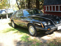 1984 Mustang GT - Black - Never seen salt