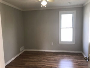 Room rental/roommate