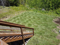 Landscaping / gardens / lawns / snow removal