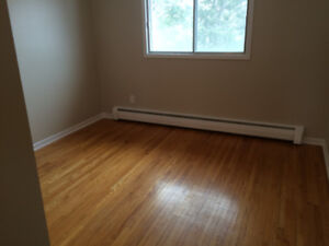 Two Bedroom Apartment in a 55 and over building