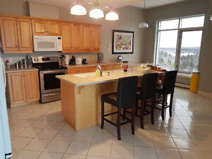 2400 sqf Penthouse Condo with great view! Great Location.