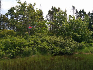 Lake lot for sale in Porters Lake