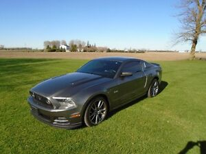 2014 Ford Mustang GT Premium Loaded, Mint Condition W/Warranty!