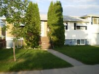 Large One Bedroom Basement Suite In Meadow Green