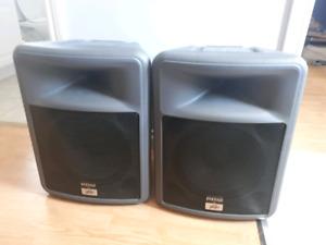 Peavey PR12 Passive Speakers