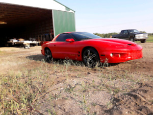 1999 Pontiac Firebird - Excellent Condition