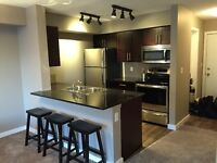 2 Bedroom Fully Furnished Condo South Edmonton