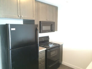 3 Yr New 1 Bedroom Condo for Rent near Appleby and Upper M