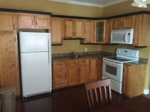 One Bedroom Bachelor Apt $750/month including Utilities