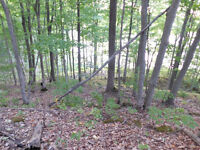 6.5 acres waterfront lot on Mica Lake. 35 min. to Kingston