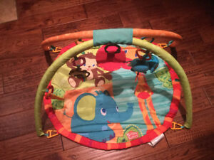 Baby Activity Gym/Play Mat