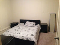 Room for rent in a spacious 2 BR apartment near UofM