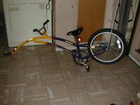GIRAFE Trail a bike