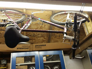 Adult Extreme Millenium 21 Speed Mountain Bike