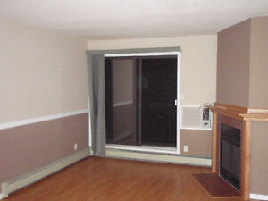 Renovated/Modified LakeView Condo -- June 1st