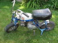 1970 Honda mini trail   mini bike