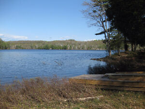 Vacant Waterfront Land On Bell Lake