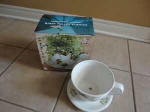 Brand new in box decorative large tea cup saucer planter pot London Ontario image 3