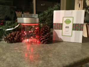 Make a Scene Scentsy Warmer