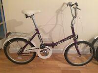 X2 folding bikes